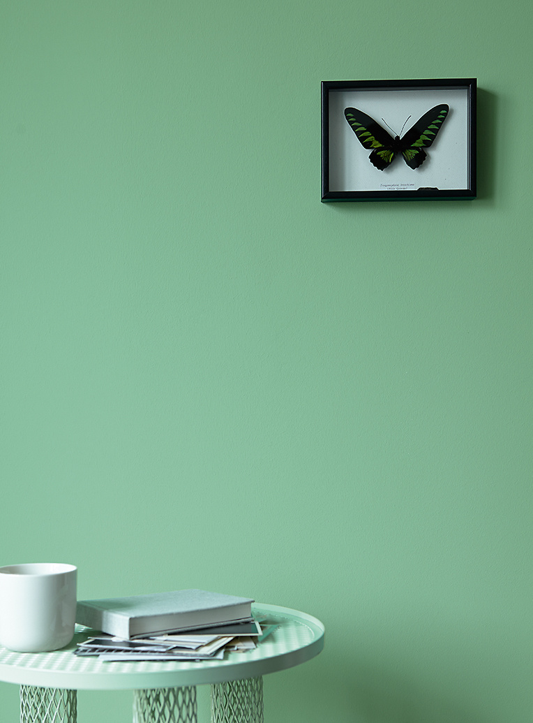 Premium Wandfarbe Grun Blaugrun Alpina Feine Farben Flugel In