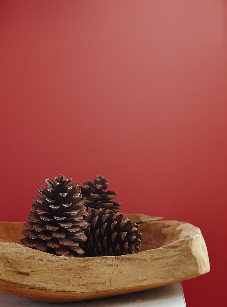 premium wandfarbe rot glutrot alpina feine farben. Black Bedroom Furniture Sets. Home Design Ideas