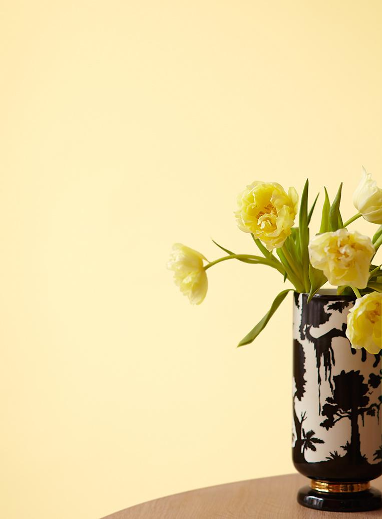Premium wandfarbe gelb pastellgelb alpina feine farben - Wandfarbe elfenbein ...