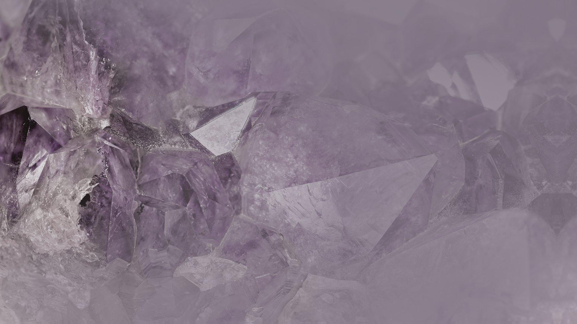 Alpina Feine Farben: edelmatte Wandfarben in Violett und Lila ...